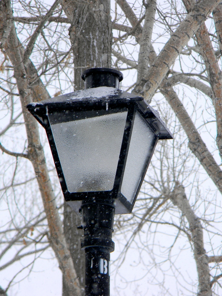 Lamp Post To Narnia